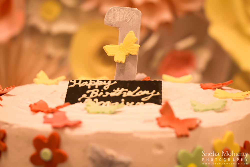Baby Birthday Photography, Butterfly Theme